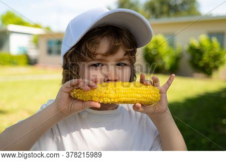 Close-up Portrait Of Cute Little Child Eating Yellow Sweet Corncob Corn. Autumn Lifestyle. Homegrown