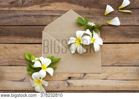 White Flowers Frangipani In Brown Envelope Arrangement Flat Lay Postcard Style On Background Wooden