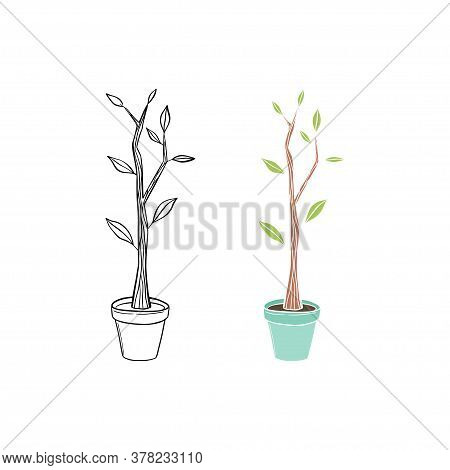 Hand Drawn Illustration Of A Little Tree In A Plant Pot.