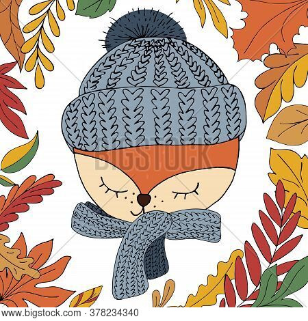 Cute Cartoon Fox Face In A Warm Knitted Hat And Scarf On A White Background With Autumn Leaves In Do