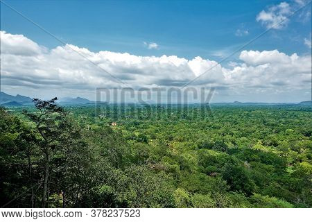 Jungle Panorama From The Top Of Mount Sigiriya. The Green Forest Stretches To The Horizon. Silhouett
