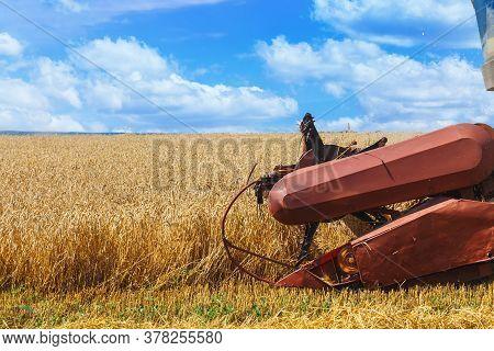The Combine Harvests Ripe Wheat In The Grain Field.