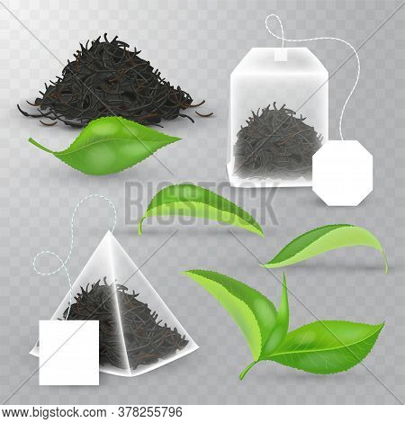 Realistic Vector Elements Set Of Black Tea. Fresh Leaves, Pyramidal Tea Bag, Rectangular Teabag, Pil