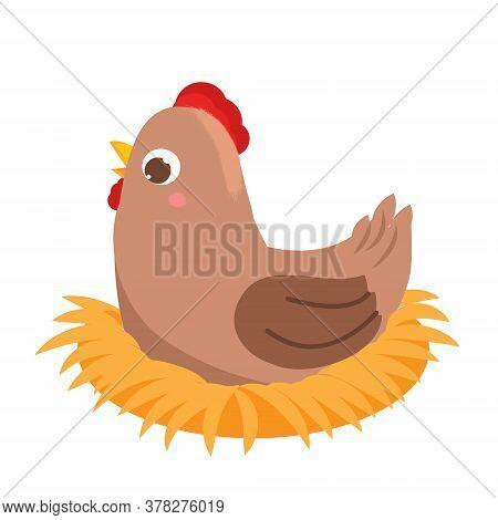 Cute Hen On Nest. Cartoon Nesting Bird Isolated On White