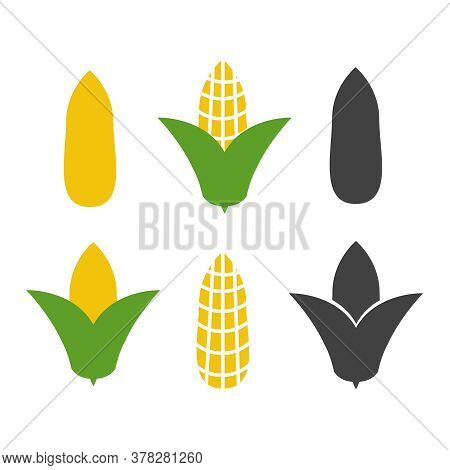 Organic Corn Vector. Corn And Corncob Vegetable Agriculture