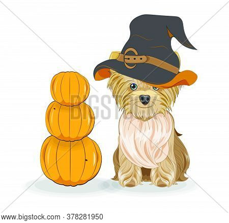 Lovely Vector Puppy, Dog In Halloween Hat And Pumpkins. Picture In Hand Drawing Cartoon Style, For T