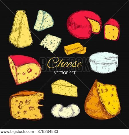 Cheese Vector Collection. Hand Drawn Illustration Of Cheese Types Brie, Mozzarella, Stilton, Blue Ch