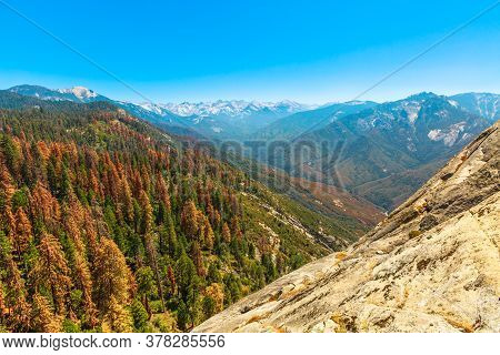 Panorama Of Sequoia National Park. Top Of Moro Rock Trail In Summer In California, United States Of