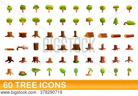 60 Tree Icons Set. Cartoon Illustration Of 60 Tree Icons Vector Set Isolated On White Background