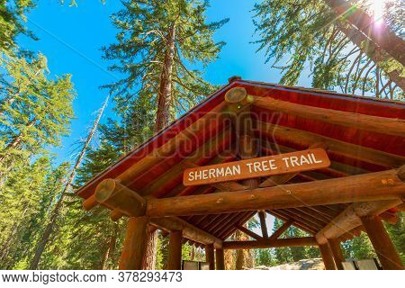 General Sherman Tree Trail Gate In Sequoia National Park, Sierra Nevada In California, United States