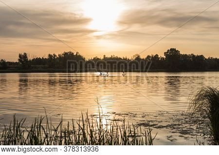 Summer, Vacation, Sup Paddleboarding Or Surfing, Travel, Lifestyle Concept. Sunset By The River. Lan