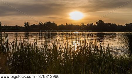 Summer, Vacation. Sunset By The River. Landscape With A Tree  During Sunset In Warm Colors. River Su