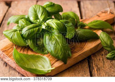Green Leafs Of Genovese Basil (ocimum Basilicum).italian Cuisine Concept. Green Leafs Of Genovese Ba