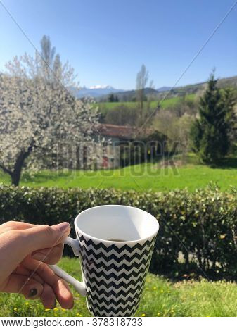 Cup Of Hot Beverage In Woman's Hand And Spring Mountain Snowy Peak On The Background. Vertical. Trav