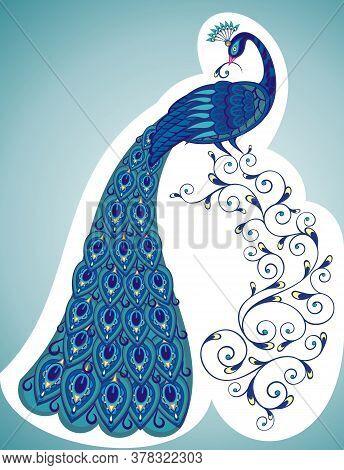 Vector Peacock. Vector Color Peacock Illustration For Yor Design