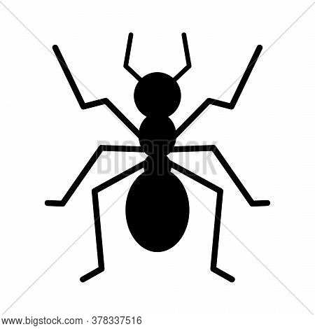 Ant Icon Isolated On White Background. Vector Illustration