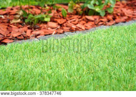 Gardening Design With The Artificial Grass. Landscape Design Background.