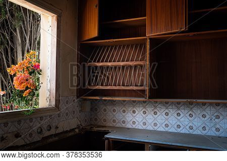 Interior Of An Old Abandoned House Kitchen With Damaged Wooden Furniture And Blooming Flower On The