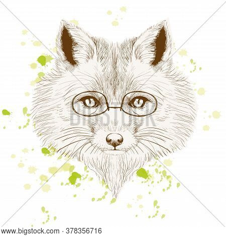 Fox With Glasses On An Orange Background. Business Fox