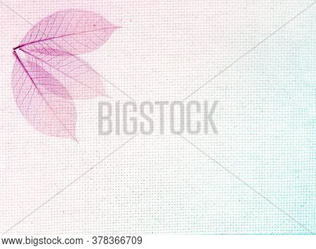 Horizontal or vertical background with leaves on canvas texture. Transparent skeleton leaves on linen mesh. Natural eco backdrop. Copy space for text. Photo toned in blue and lilac color