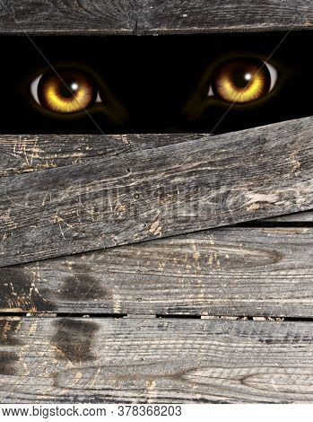 Vertical Halloween background with old wooden boards and eyes of monster in dark. Werewolf peeking from behind a wooden fence. Mock up template. Copy space for text. 3d render