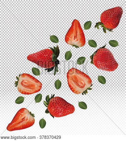 Set Of Strawberries With Leaves On Transparent Background. Strawberry Fruits Are Whole And Cut In Ha