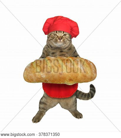 The Beige Cat Baker In A Red Chef Hat And Apron Is Holding A Big Loaf Of  White Bread. White Backgro