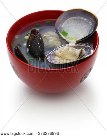 ooshijimi jiru, big size japanese basket clams soup, japanese cuisine