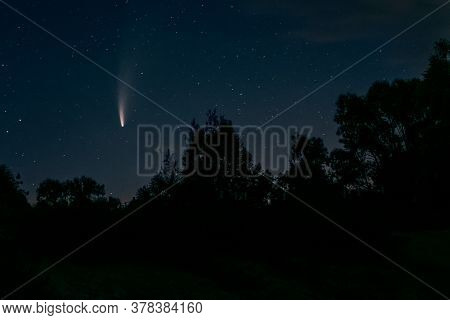 Neowise Comet C 2020 F3 Above Night Forest