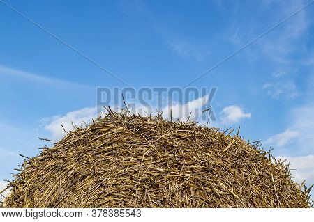 Haystack Against The Blue Sky. Background Image Texture Closeup. Livestock Feed, Agriculture. Place