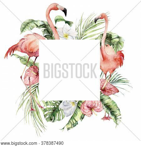 Watercolor Tropical Frame With Pink Flamingo, Plumeria, Monstera And Anthurium. Hand Painted Birds,
