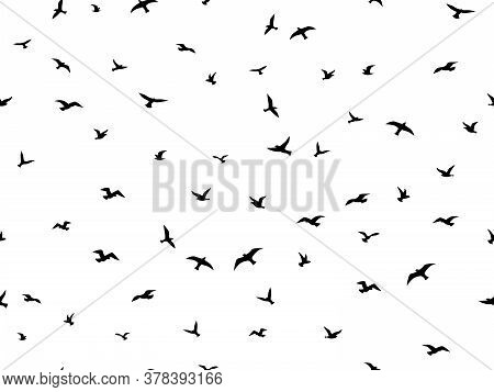 Flying Bird Seamless Pattern. Flock Flying Birds Silhouettes, Graphic Simple Seagull Shapes Decorati