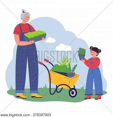 Grandmother And Kid Working In The Garden With Equipment And A Pot Of Greenery.flat Vector Illustrat