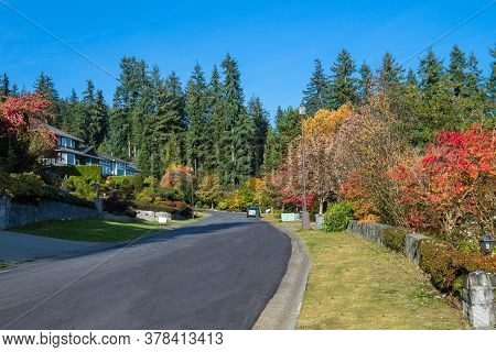 Autumn Time In A Residential District, Yellow Trees On The Sides Of The Road In A Beautiful Neighbor