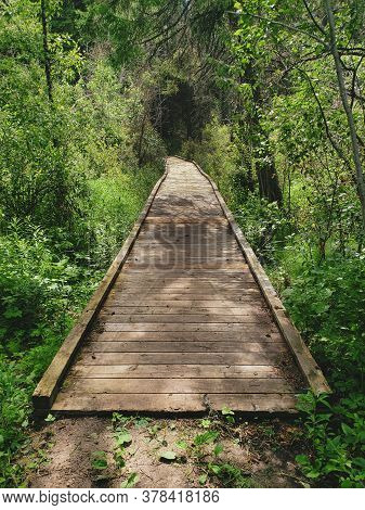 Boardwalk Bridge On The Lake Kinosao Trail In Riding Mountain National Park, Manitoba, Canada