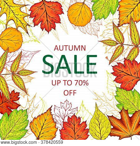 Autumn Sale Vector Banner With Fall Leaves. Hand Drawn Fall Frame Illustration. Autumn Leaves Banner