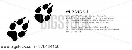 Banner Of Trace Of Forest Animal, The Trace Of A Predatory Animal Wolf, Vector Illustration