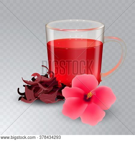 Hibiscus Tea In A Glass Mug And Flower Isolated On A Transparent Background. Dry Roselle Tea. Realis