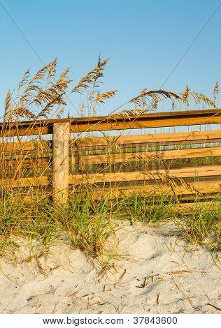 A Dune Boardwalk And Sea Oats