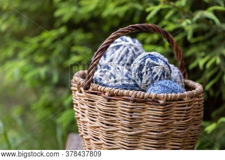 White-blue Fluffy Woolen Balls In A Basket On A Background Of Green Branches Of Spruce. Horizontal P