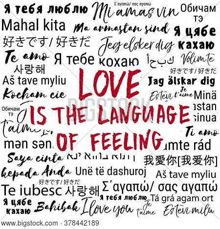 Love Is The Language Of Feeling. Vector Hand Drawn Romantic Quote On Text Background. Happy Valentin
