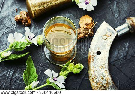 Althaea In Herbal Medicine