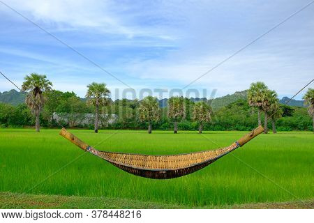 Rattan Cradle With Green Field Background, Hanging Bench Seat Cradle Hammock, Clear Blue Sky And Gre