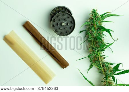 Fresh Marijuana Green Bud Top View. Smoking Accessories On White Background. Joint Paper, Blunt And