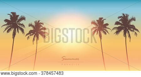 Tropical Summer Paradise Sunny Background With Palm Tree Vector Illustration Eps10