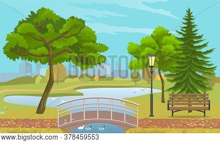 City Park With A Lawn And Trees. Autumn Park With Plant Environmental And Lush Grass With Wooden Ben