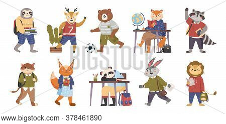 Animals Students Funny Collection In Cartoon. Smart Animals Students On Education Writing, Reading B