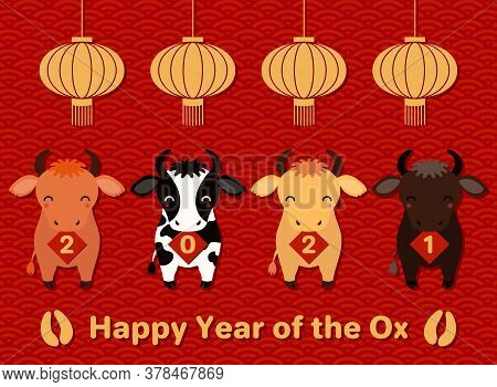 2021 Chinese New Year Vector Illustration With Cute Oxen Holding Cards With Numbers, Lanterns, Hoof