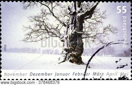 02 09 2020 Divnoe Stavropol Territory Russia The Postage Stamp Germany 2006 Seasons Winter Old Tree
