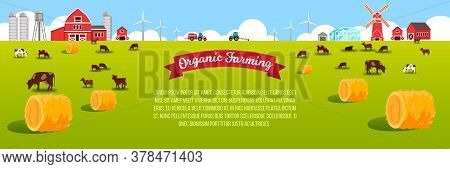 Livestock Farm Landscape With Cows, Field, Haystacks, Barn, Mill, Wind Turbine, Green Meadow. Organi